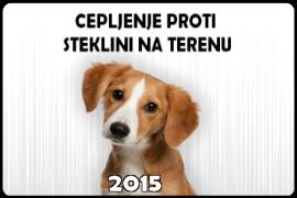 steklina 2015-2